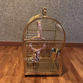 Bird cage for sales for small to middle parrots