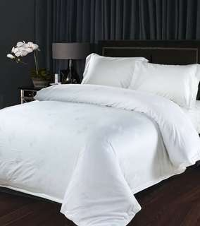 QUEEN 4in1 Plain White Bed Sheet