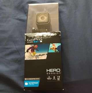 Go Pro: Hero Session
