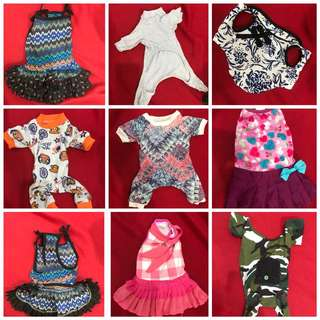 Dog dresses and onesies