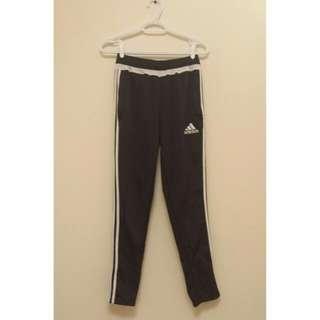 Gray Adidas Tiro Pants