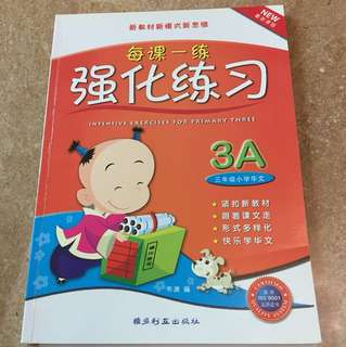 Chinese P3 Intensive Assessment Book