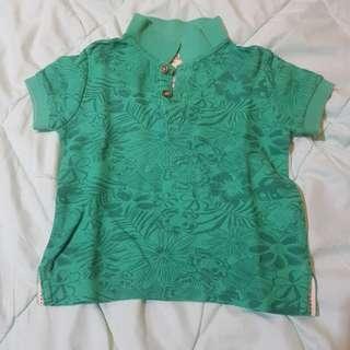 Original Gingersnaps Green