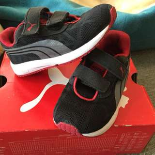 Puma toddler UK6