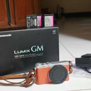 Panasonic lumix GM1 Body Only smallest m4/3 mirrorless