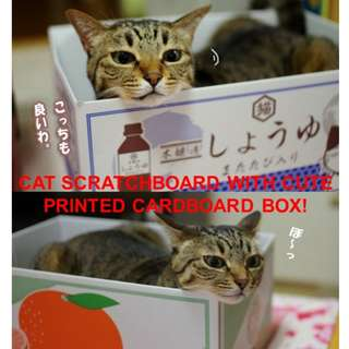 Cat toy box with scratch board
