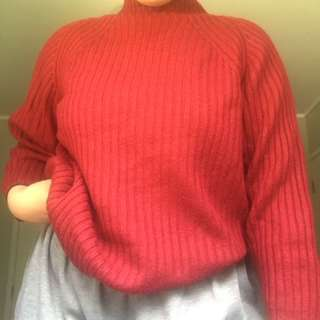 Red ribbed turtle neck