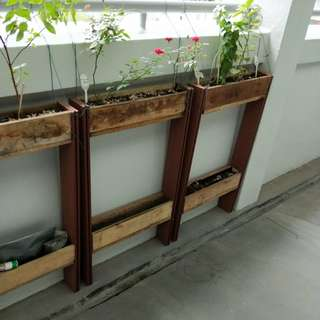 2 Tier Gardening Rack Fits Along Wall Of HDB Corridor.  Does Not Obstruct The Drainage. Does Not Hinder Cleaning By Town Council Contractors.  Not Permanent Structure. Can Be Removed Easily