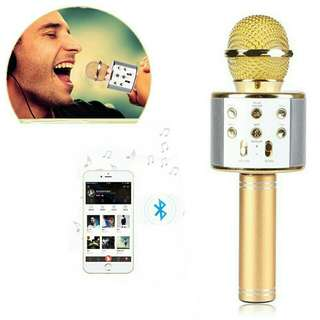 WS 858 Microphone