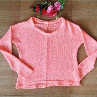 Terra Nova sweater