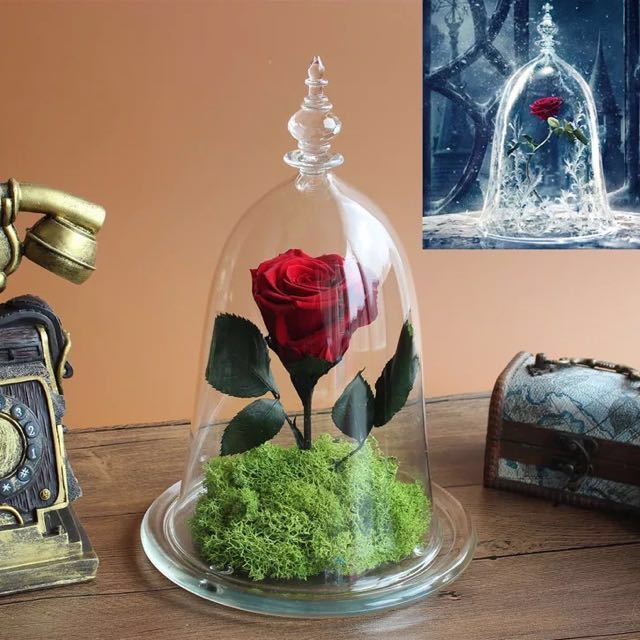 Home Decoration And Furnishing Articles Couple Characters: Beauty And The Beast Enchanted Rose Preserved Rose Glass
