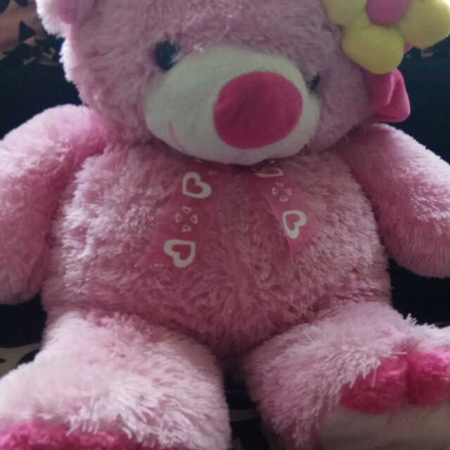 Boneka teddy BIG Pink