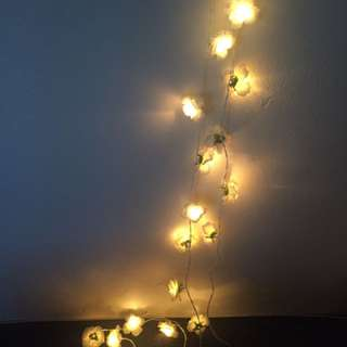 Flower Fairy Lights
