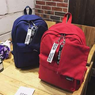 Classic Plains Color Pattern Designs Small Coins Bag Attached Student School Travel Backpack