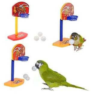 New basketball hoop for birds.