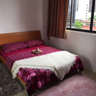 Common Room For Rental (5 Mins To Orchard Mrt )