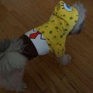 Spogebob Squarepants Dog Costume size S