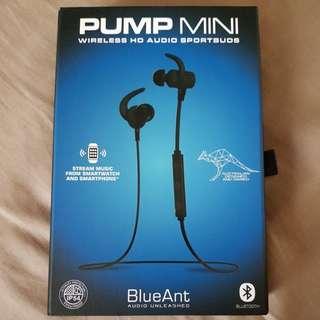 Wireless earphones blueant