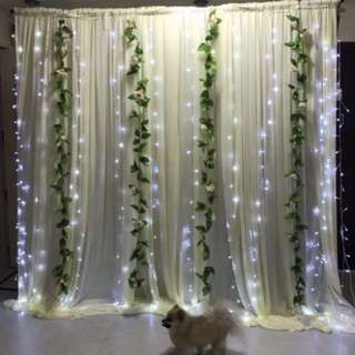 Backdrop Rental With Flower Vines