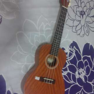 Aria Concert Ukulele with bag
