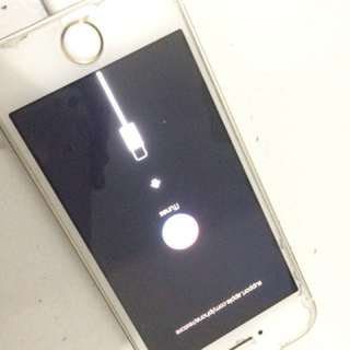Iphone 5s Gold 16 Gb REPRICE