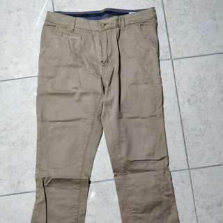 hammer 30 size chocolate chino