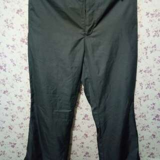 authentic NIKE gray climate pants