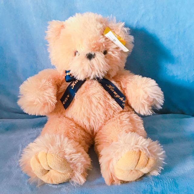 中型熊 Teddy Bear