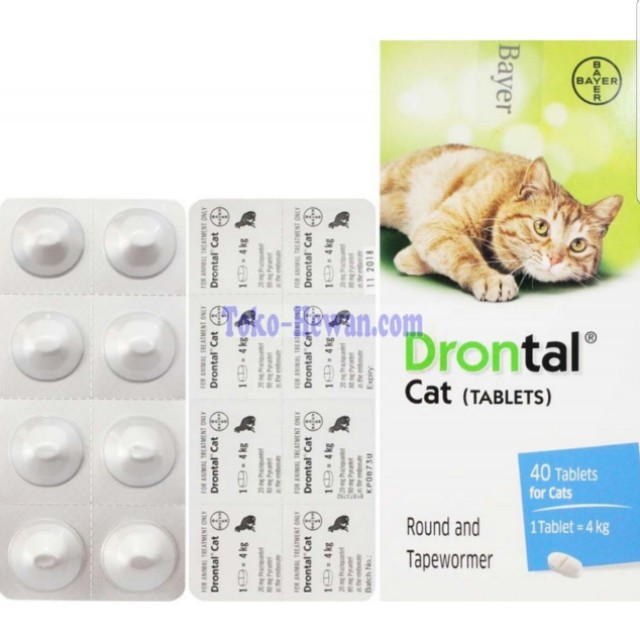 BAYER : Drontal Cat Tablet (deworm), Pet Supplies on Carousell