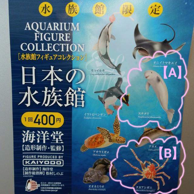 ~☆藝羚小鋪ELMP☆~日本水族館限定扭蛋 擬真版 鯨豚款 螃蟹款