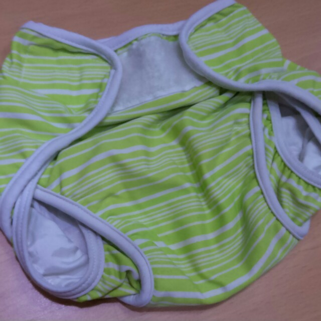 Swim Dappy swim wear for babies