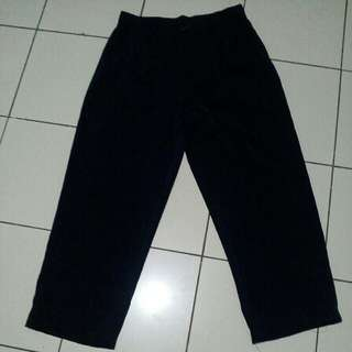 Shishun flitted pants navy blue