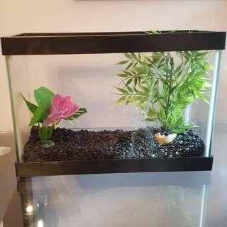 1.25G Fish Tank
