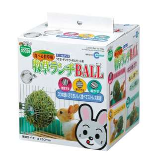 *NEW* PET Stainless Steel Rabbit Treat Ball