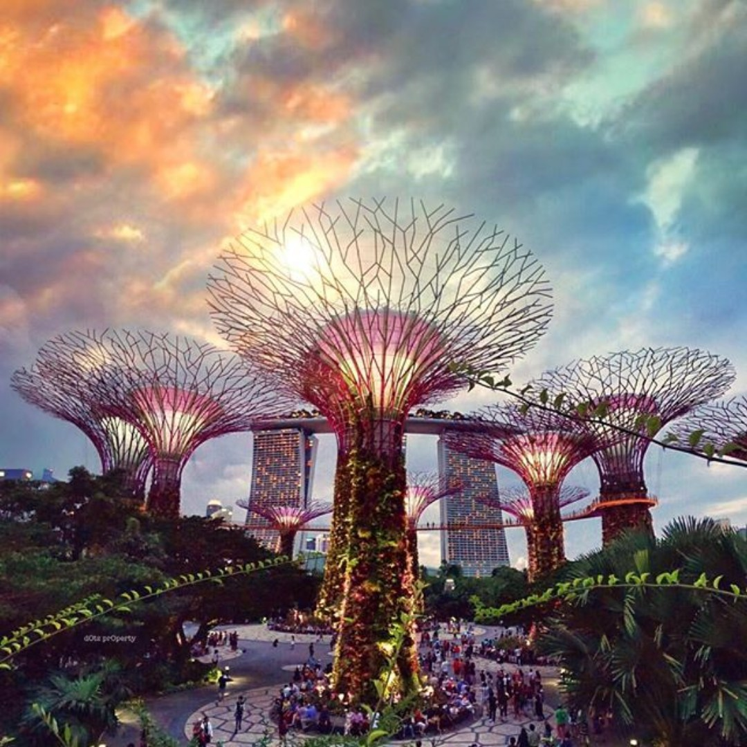 physical garden by the bay tickets entertainment attractions on carousell