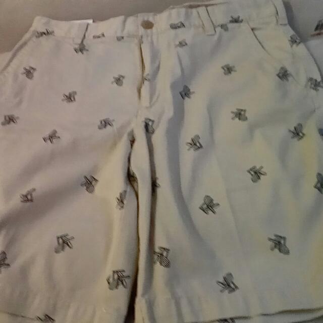 Izod Saltwater Walking Shorts
