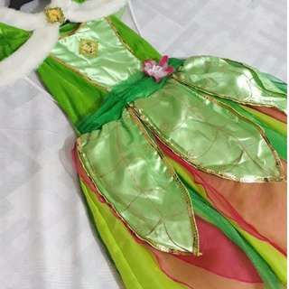 (PRICE UPDATED) Tinkerbell Kid's Costume