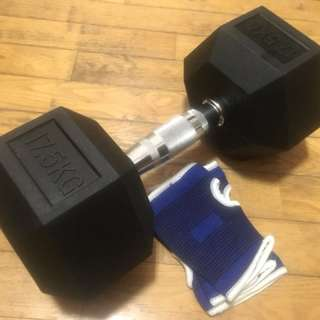 Dumbbell / Weights @ 17.5 kg (one-piece)