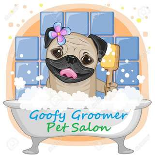 Salon Hewan Door To Door Goofy Groomer Petsalon