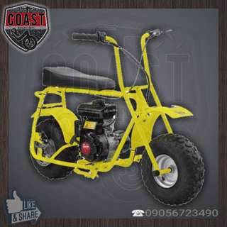Dirt Bug MINI BIKE