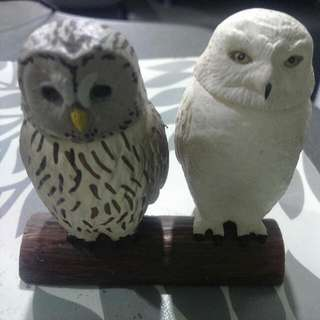 Owl Display Toy