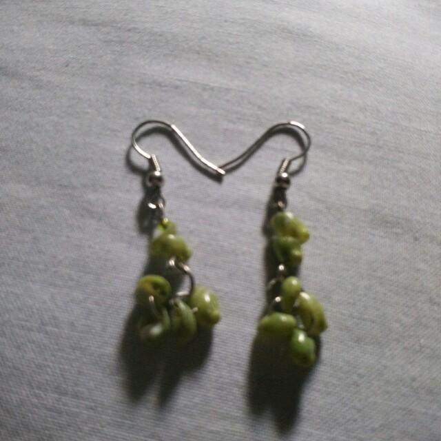 Sea shell earrings..