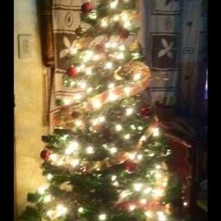 Christmas Tree (5ft)