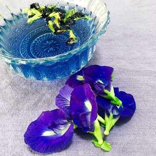 Butterfly Pea Flower Tea (20g/50g/100g)