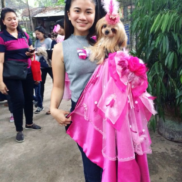 Dog pink gown
