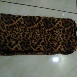 Segi Empat leopard
