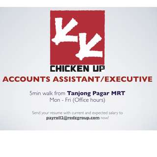 Accounts Assistant/Executive
