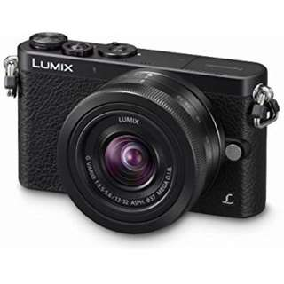 Panasonic Lumix DMC-GM1K