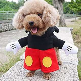 Dog mickey mouse costume