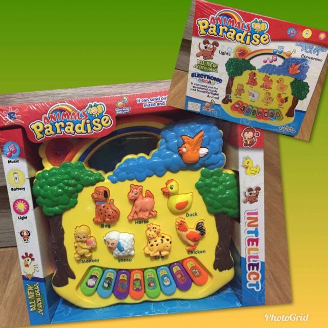 Animal Paradise Educational toy